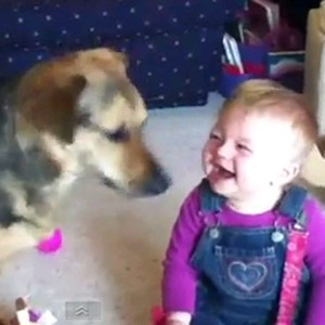 laughing-baby-bubbles-dog-video